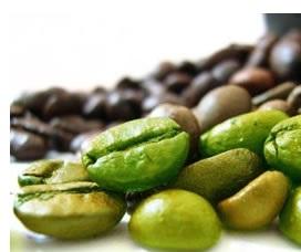 estratto di caffè verde vs chicco di caffè verde