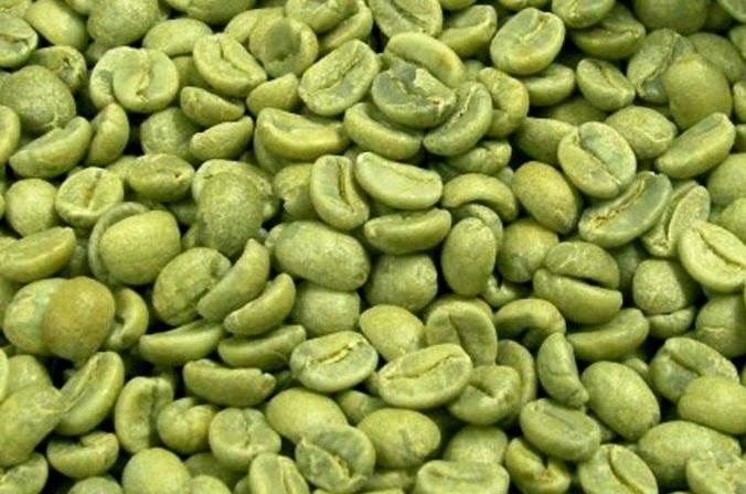 aumento di peso sull estratto di caffè verde in grani